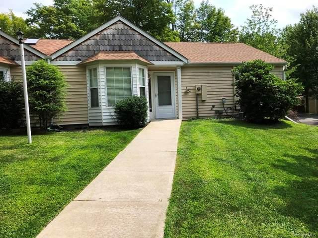 44 Hidden Ridge Drive, Monticello, NY 12701 (MLS #H6137038) :: Goldstar Premier Properties