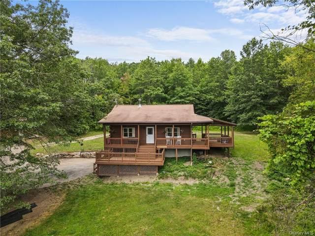 15 Butterville Road, New Paltz, NY 12561 (MLS #H6137058) :: McAteer & Will Estates | Keller Williams Real Estate