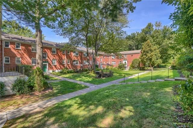29 Fieldstone Drive G4, Hartsdale, NY 10530 (MLS #H6137100) :: Barbara Carter Team