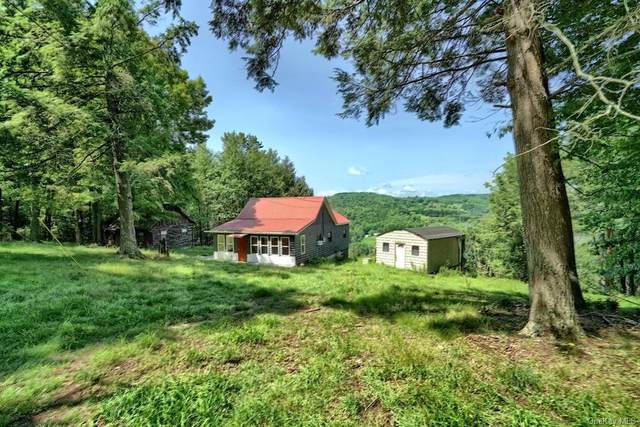 165 Boband Road, Jeffersonville, NY 12748 (MLS #H6137296) :: Team Pagano