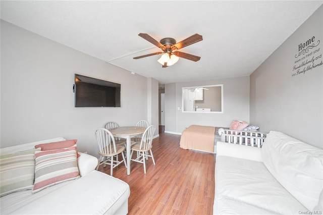 155 Ferris Avenue 12E, White Plains, NY 10603 (MLS #H6137365) :: Laurie Savino Realtor