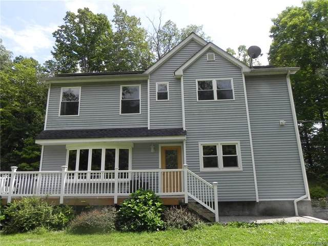 3235 State Route 94, Chester, NY 10918 (MLS #H6137377) :: The McGovern Caplicki Team
