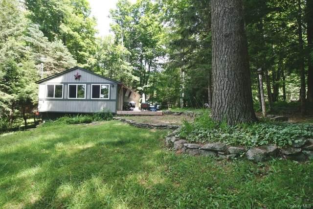 99 Park Drive, Livingston Manor, NY 12768 (MLS #H6137397) :: McAteer & Will Estates   Keller Williams Real Estate
