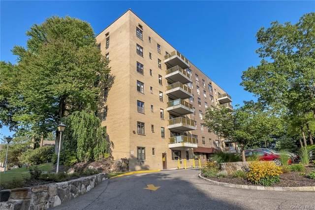 25 Stewart Place #318, Mount Kisco, NY 10549 (MLS #H6137580) :: Kendall Group Real Estate | Keller Williams
