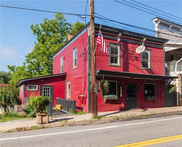 19 Lower Main Street, Callicoon, NY 12723 (MLS #H6137608) :: Keller Williams Points North - Team Galligan