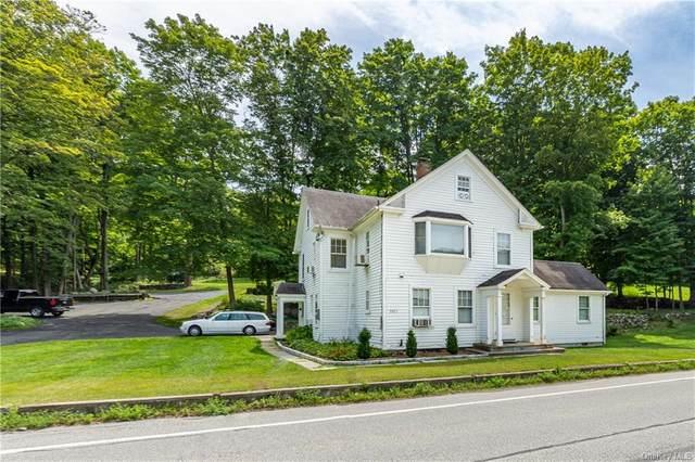 3951 Danbury Road, Brewster, NY 10509 (MLS #H6137736) :: McAteer & Will Estates   Keller Williams Real Estate