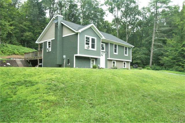 558 State Route 52A, Callicoon, NY 12723 (MLS #H6137825) :: Keller Williams Points North - Team Galligan
