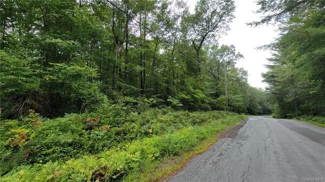 Perry Pond Road, Narrowsburg, NY 12764 (MLS #H6138028) :: Goldstar Premier Properties