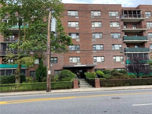 266 Pelham Road 2F, New Rochelle, NY 10801 (MLS #H6138031) :: Cronin & Company Real Estate