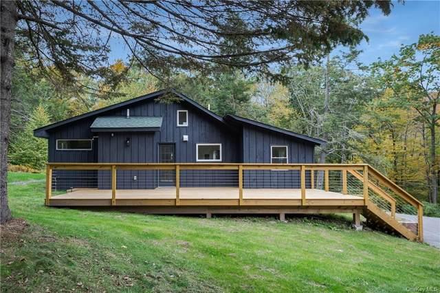 13 Brenner Road, Grahamsville, NY 12740 (MLS #H6138073) :: Cronin & Company Real Estate