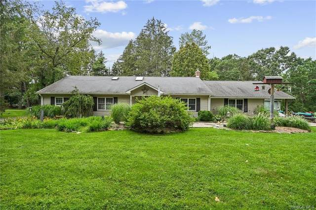 169 Lime Ridge Road, Poughquag, NY 12570 (MLS #H6138119) :: Kendall Group Real Estate | Keller Williams