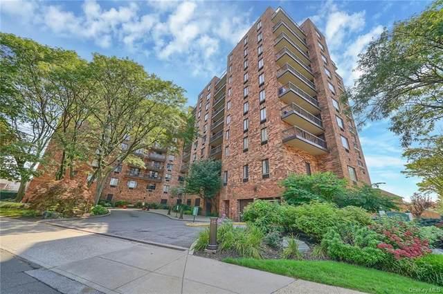 50 Columbus Avenue #316, Tuckahoe, NY 10707 (MLS #H6138322) :: Goldstar Premier Properties