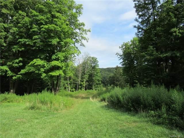 S Quaker Hill Road, Pawling, NY 12564 (MLS #H6138385) :: Corcoran Baer & McIntosh