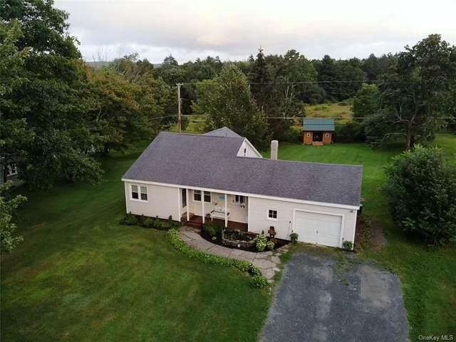 7516 State Route 55, Neversink, NY 12765 (MLS #H6138393) :: Goldstar Premier Properties