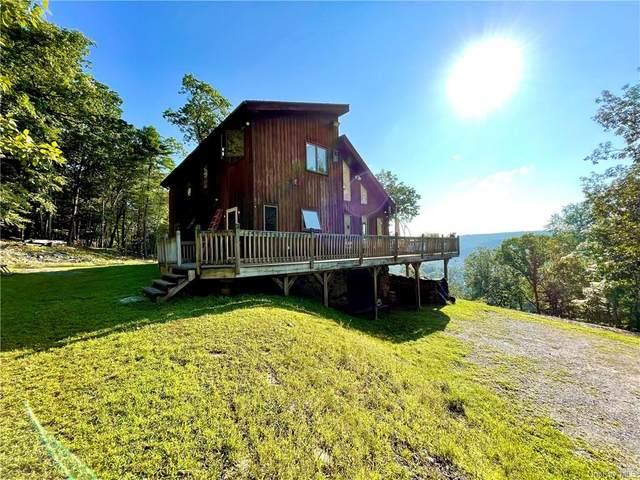 119 Rio Dam Road, Glen Spey, NY 12737 (MLS #H6138459) :: Goldstar Premier Properties