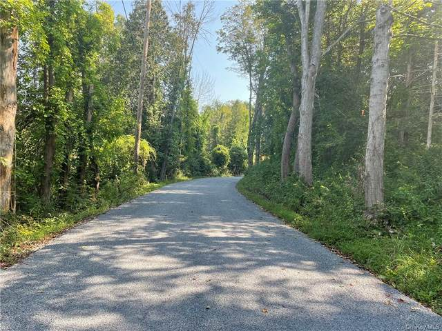 Weil Road, Dover Plains, NY 12594 (MLS #H6138544) :: Kendall Group Real Estate | Keller Williams