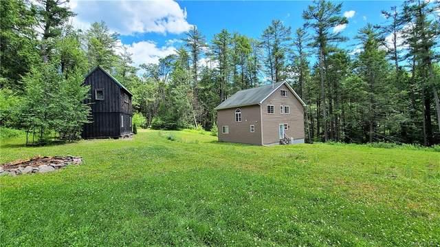 34 Mill Road, Forestburgh, NY 12777 (MLS #H6138583) :: Goldstar Premier Properties