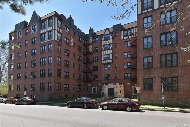 590 E Third Street 2-F, Mount Vernon, NY 10553 (MLS #H6138799) :: Cronin & Company Real Estate