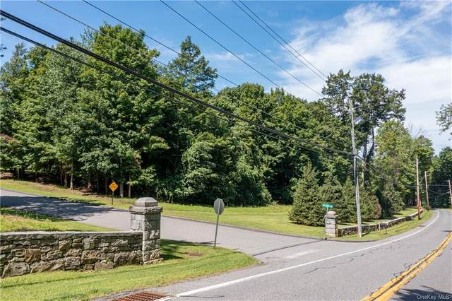 10 Tea House Lane, Brewster, NY 10509 (MLS #H6138833) :: McAteer & Will Estates   Keller Williams Real Estate