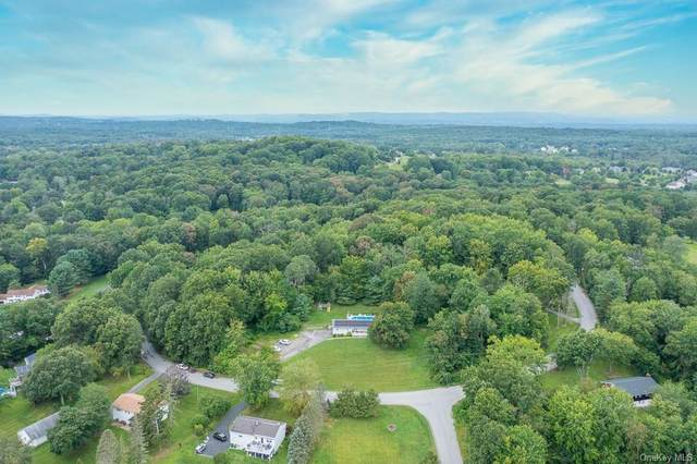 35 Crown Hill Road, Wappingers Falls, NY 12590 (MLS #H6138908) :: Signature Premier Properties