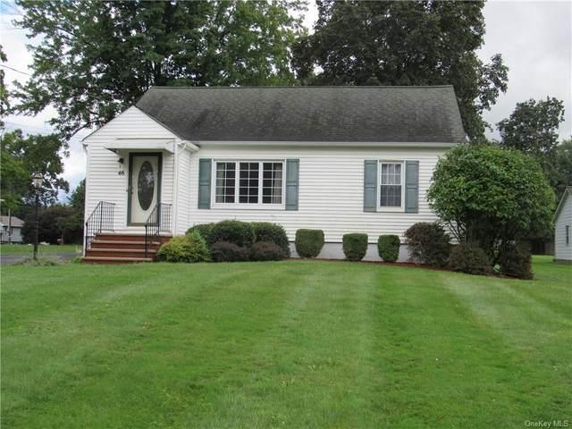 46 Werner Avenue, Florida, NY 10921 (MLS #H6138920) :: Carollo Real Estate