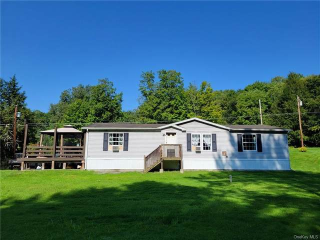 180 Bernas Road, Cochecton, NY 12726 (MLS #H6138983) :: Cronin & Company Real Estate