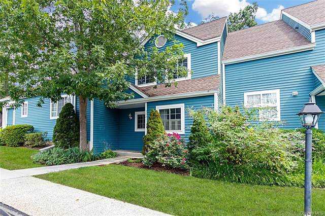 202 Ashbury Way, Brewster, NY 10509 (MLS #H6138995) :: The SMP Team