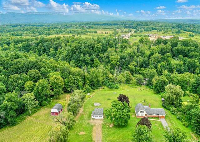 142 Mckinstry Rd, Gardiner, NY 12525 (MLS #H6139061) :: Cronin & Company Real Estate