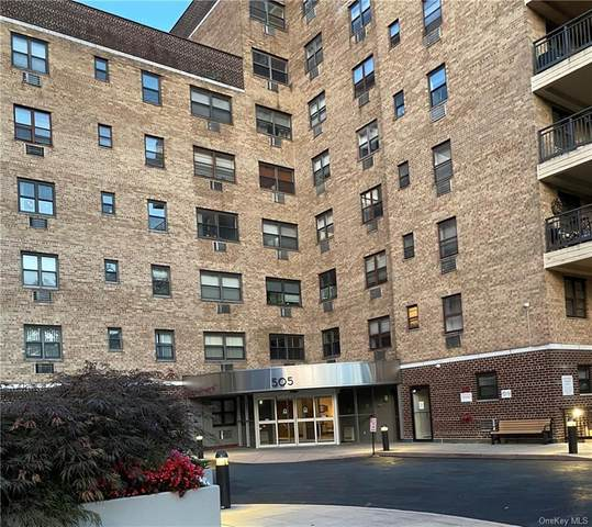 505 Central Avenue #719, White Plains, NY 10606 (MLS #H6139092) :: Laurie Savino Realtor