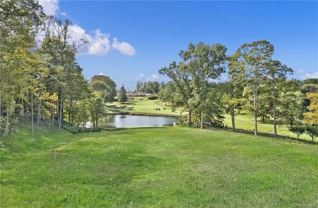 21 Brae Burn Drive, Purchase, NY 10577 (MLS #H6139297) :: McAteer & Will Estates | Keller Williams Real Estate