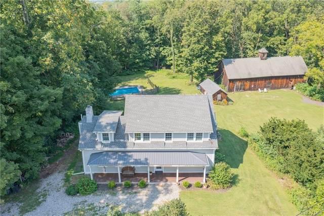 66 Wheeler Road, Florida, NY 10921 (MLS #H6139299) :: Carollo Real Estate
