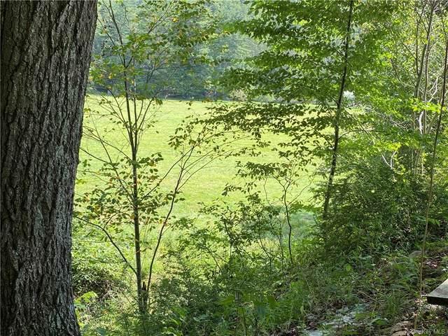 416 Sundown Road, Grahamsville, NY 12740 (MLS #H6139310) :: Cronin & Company Real Estate