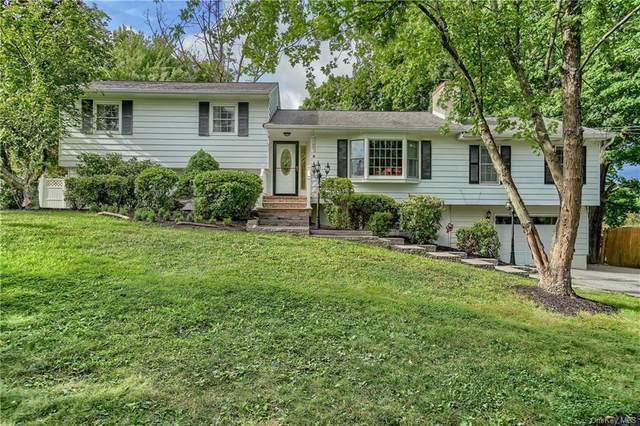 4 Cynthia Court, Florida, NY 10921 (MLS #H6139396) :: Carollo Real Estate