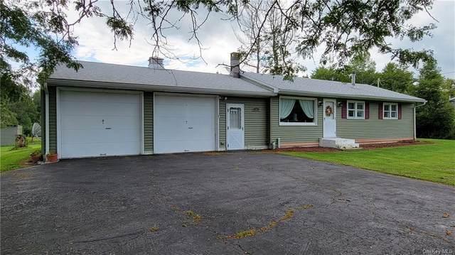 5843 State Route 52, Kenoza Lake, NY 12750 (MLS #H6139414) :: Goldstar Premier Properties