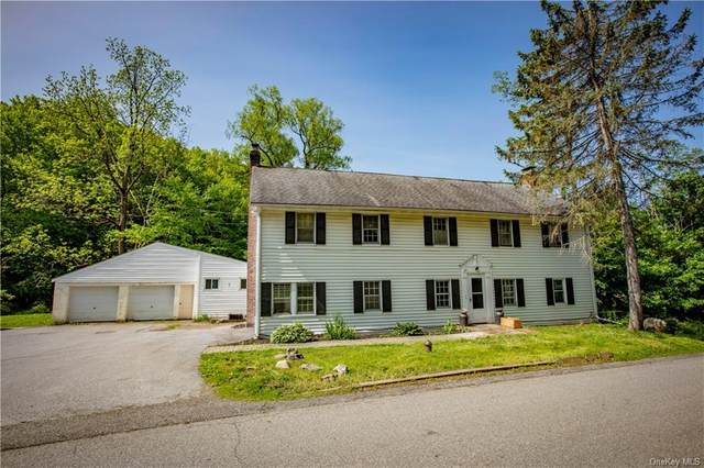 24 Oswego Road, Pleasant Valley, NY 12569 (MLS #H6139573) :: Kendall Group Real Estate | Keller Williams