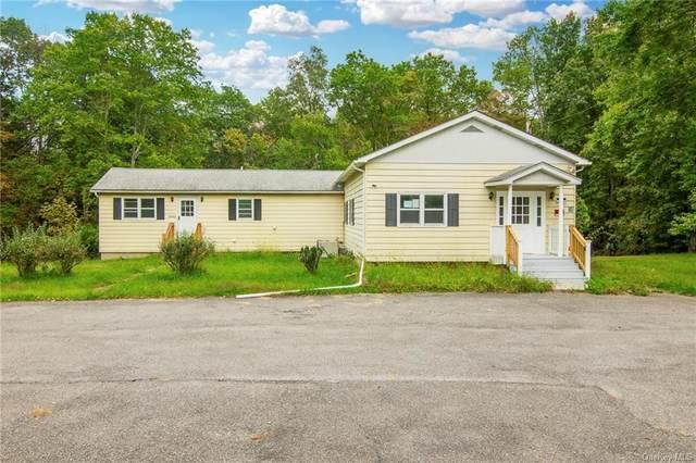 38 Hamptonburgh Road, Washingtonville, NY 10916 (MLS #H6139642) :: Cronin & Company Real Estate