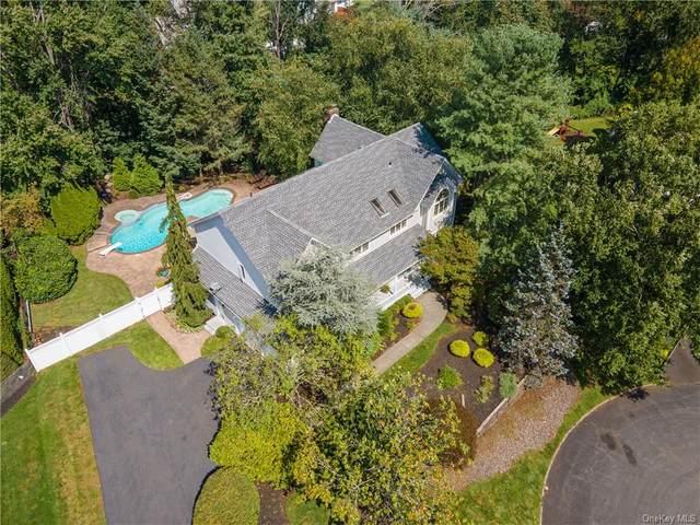47 King Arthur Court, New City, NY 10956 (MLS #H6139840) :: Cronin & Company Real Estate
