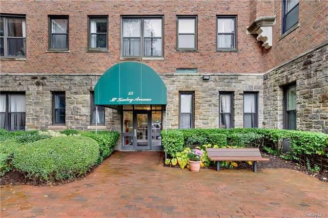 55 Mckinley Avenue D3-11, White Plains, NY 10606 (MLS #H6139854) :: Goldstar Premier Properties