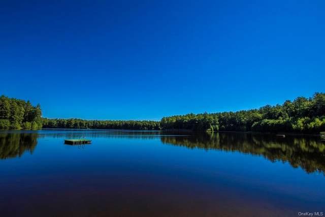 Summit Drive, Yulan, NY 12792 (MLS #H6139920) :: Howard Hanna Rand Realty