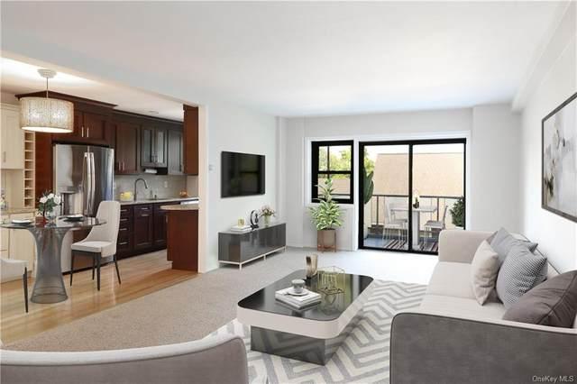 25 Stewart Place #317, Mount Kisco, NY 10549 (MLS #H6139931) :: Kendall Group Real Estate | Keller Williams