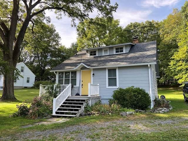 99 Primrose Hill Road, Rhinebeck, NY 12572 (MLS #H6139932) :: Corcoran Baer & McIntosh