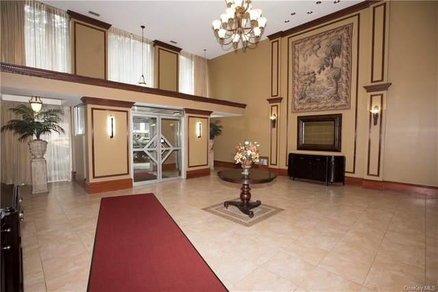11 Park Avenue 5E, Mount Vernon, NY 10550 (MLS #H6140041) :: McAteer & Will Estates | Keller Williams Real Estate