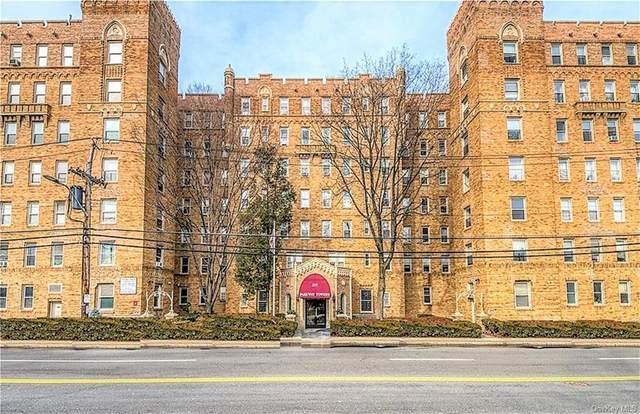 219 Bronx River Road 4L, Yonkers, NY 10704 (MLS #H6140059) :: McAteer & Will Estates | Keller Williams Real Estate