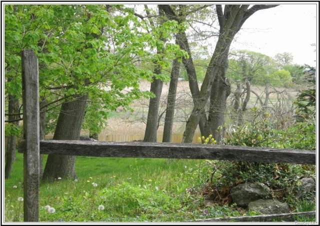 921 Soundview Drive, Mamaroneck, NY 10543 (MLS #H6140061) :: Goldstar Premier Properties