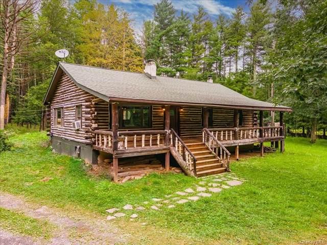 30 Denniston Drive, Saugerties, NY 12477 (MLS #H6140193) :: Cronin & Company Real Estate