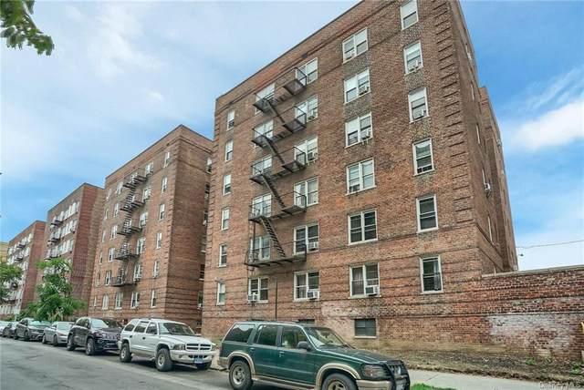 2090 Barnes Avenue 5B, Bronx, NY 10462 (MLS #H6140208) :: Laurie Savino Realtor