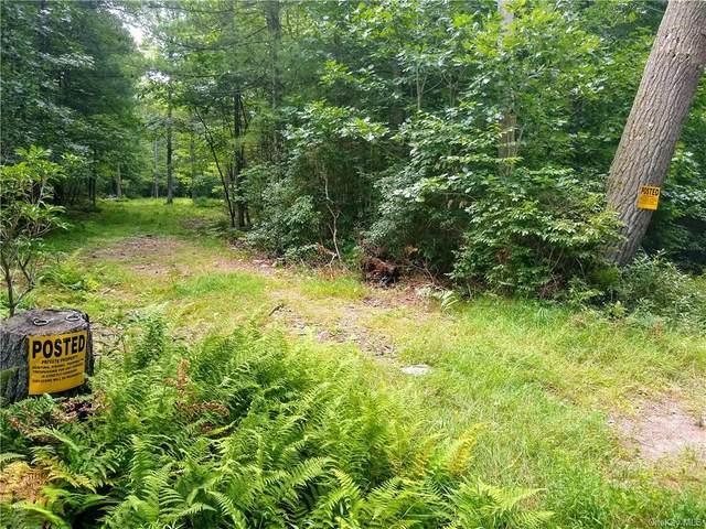 0 Skipperene Road, Cochecton, NY 12726 (MLS #H6140216) :: Cronin & Company Real Estate