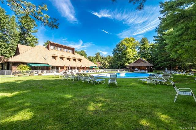 13 Water Lily Lane, Monticello, NY 12701 (MLS #H6140289) :: Goldstar Premier Properties