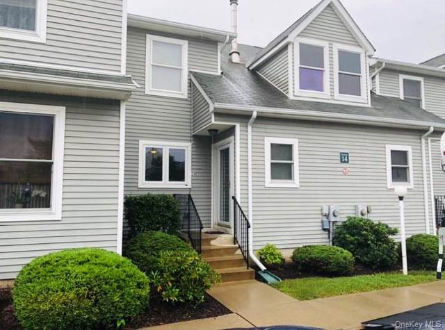 100 Boniface Drive 14C, Pine Bush, NY 12566 (MLS #H6140331) :: Cronin & Company Real Estate