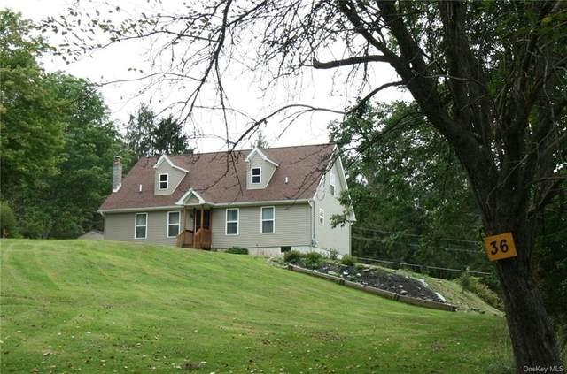 36 Worden Lane, White Sulphur Spring, NY 12787 (MLS #H6140335) :: Goldstar Premier Properties